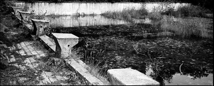 Rezerwat wodnika szuwarka