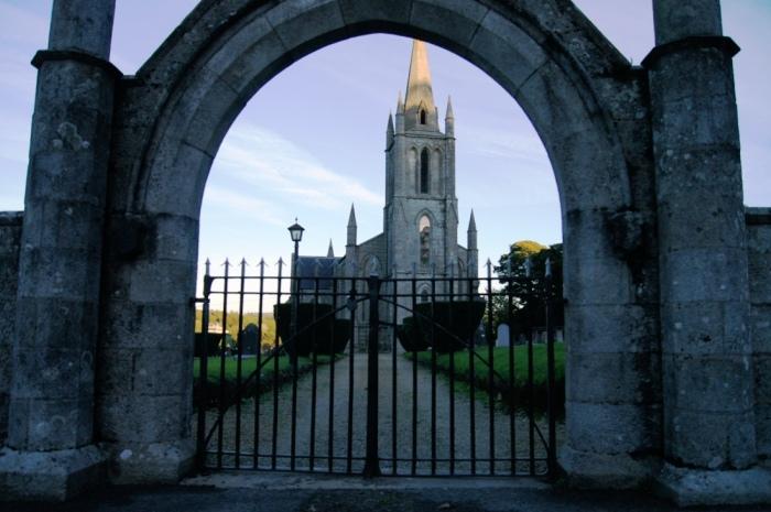 Na tym cmentarzu jak mawia jego pewien staly bywalec (ale jeszcze nie rezydent) rosnie cus co rosnie tylko w dwoch miejscach w Irlandii. Ale ja tego nie znalazlem.